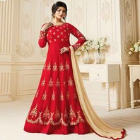 Indian Georgette DR73