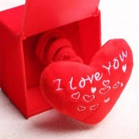 Valentine Gift Item collection 5051