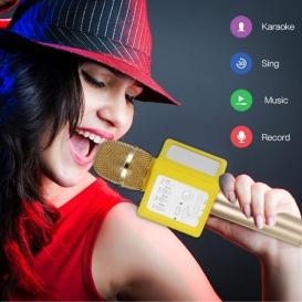 WS-858 Wireless Bluetooth Handheld Portable Karaoke Mic Speaker -355