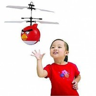 Flying angry birds-4015