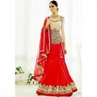 Indian Designer Embroidery Dress -dr145